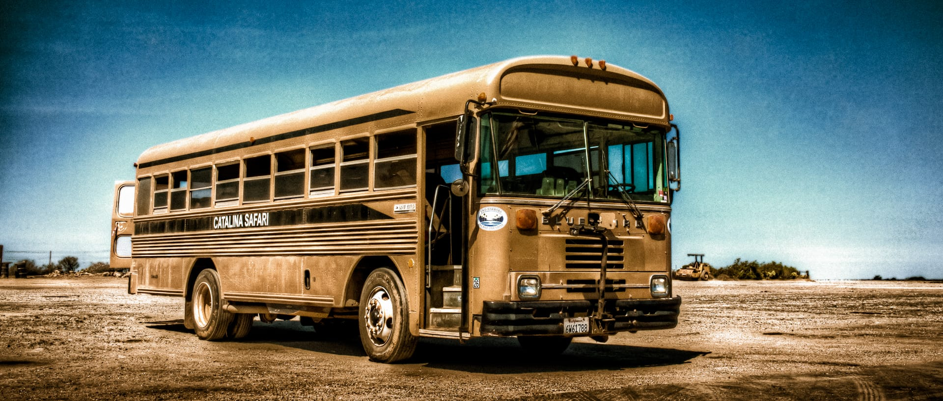 catalina safari bus