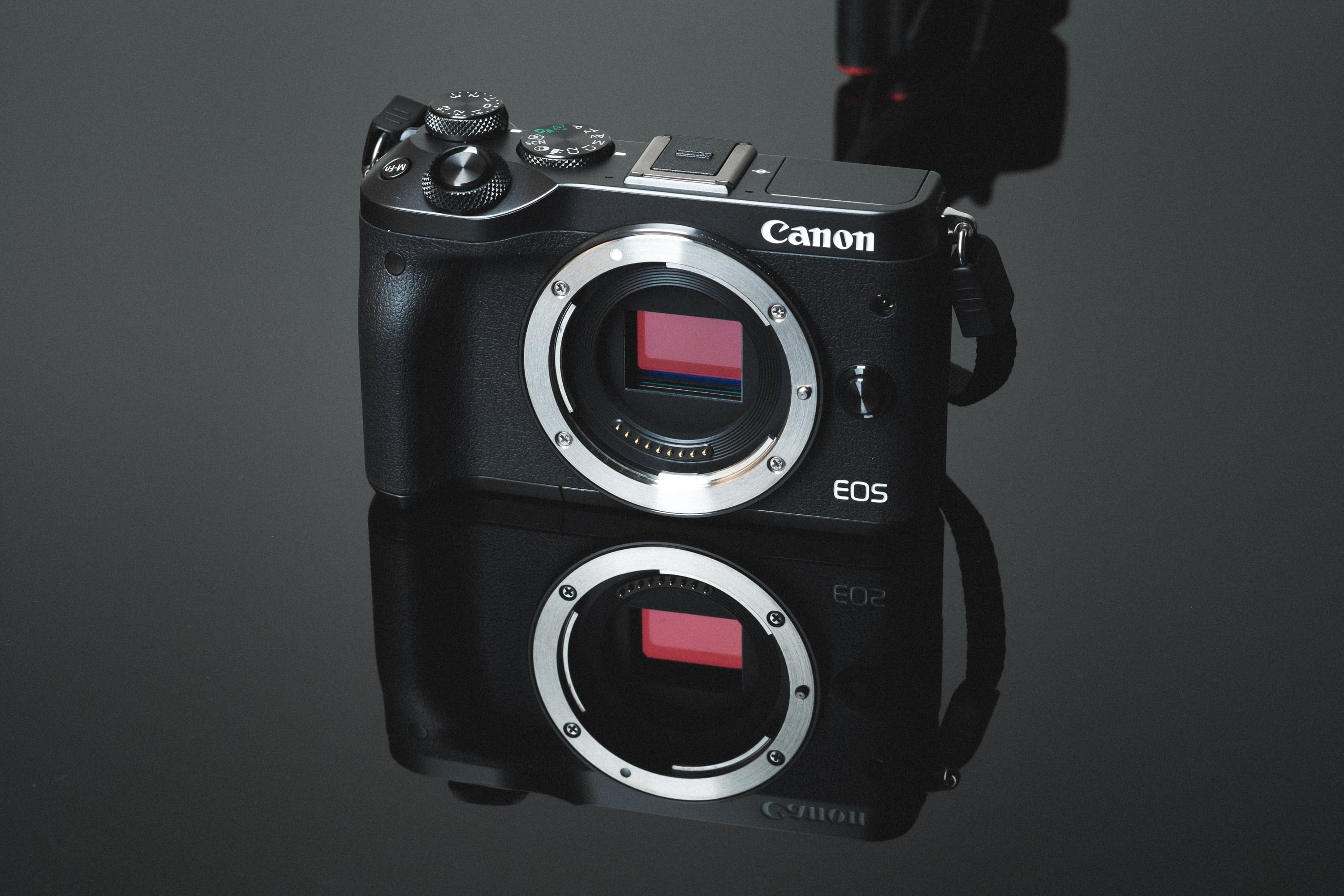 Must Have Accessories For The Canon M6.